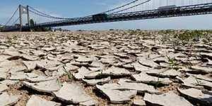 duerreperioden-und-hitzewellen-gehen-wohl-auch-auf-den-klimawandel-zurueck-foto-reuters-