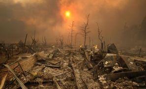 klimawandel-feuer-artikel-410